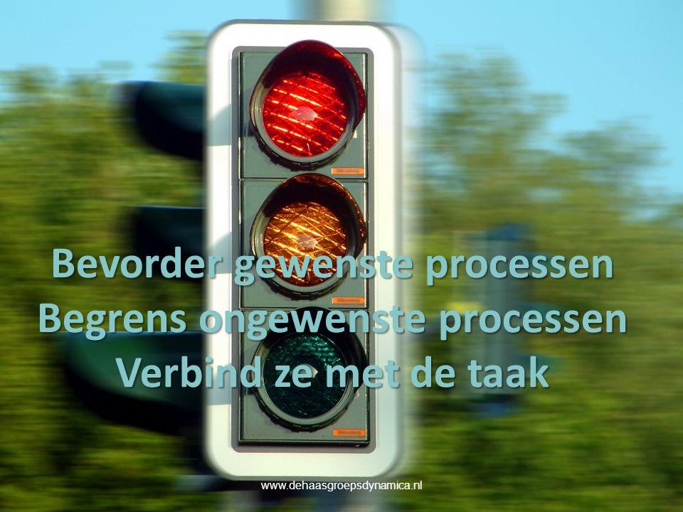 Bevorder gewenste processen Begrens ongewenste processen Verbind ze met de taak www.dehaasgroepsdynamica.nl
