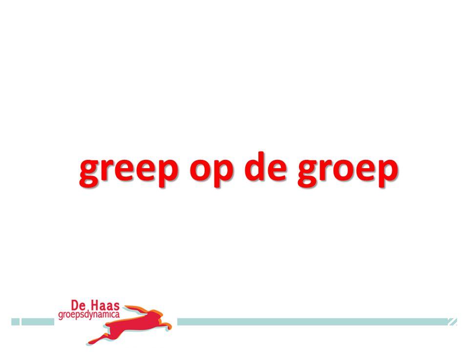 greep op de groep www.dehaasgroepsdynamica.nl