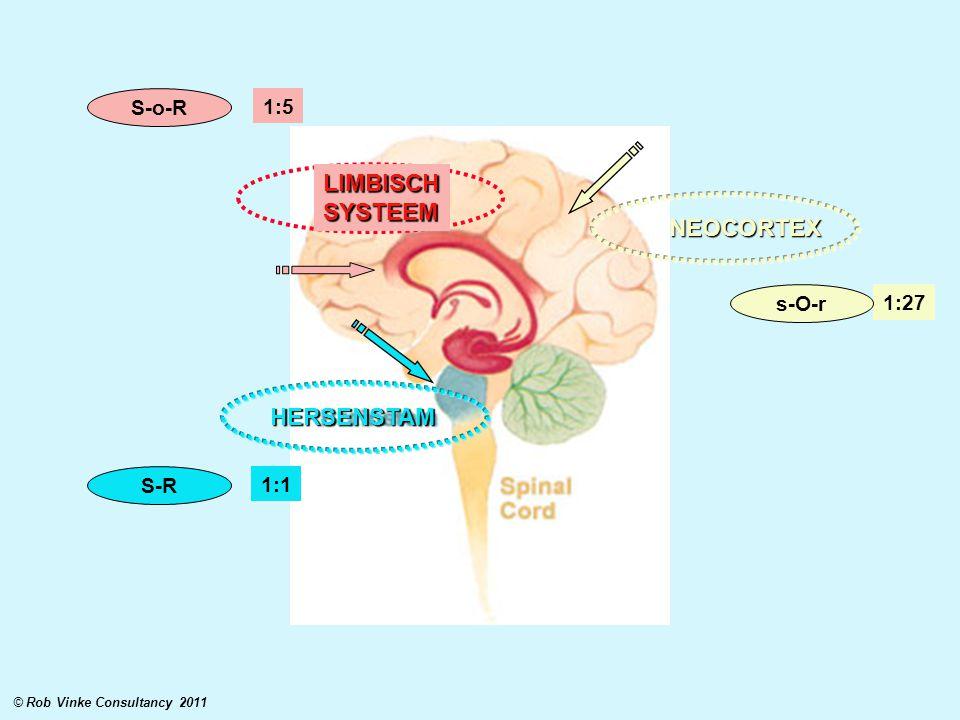 NEOCORTEX HERSENSTAM LIMBISCHSYSTEEM 1:1 1:5 1:27 S-R S-o-R s-O-r © Rob Vinke Consultancy 2011