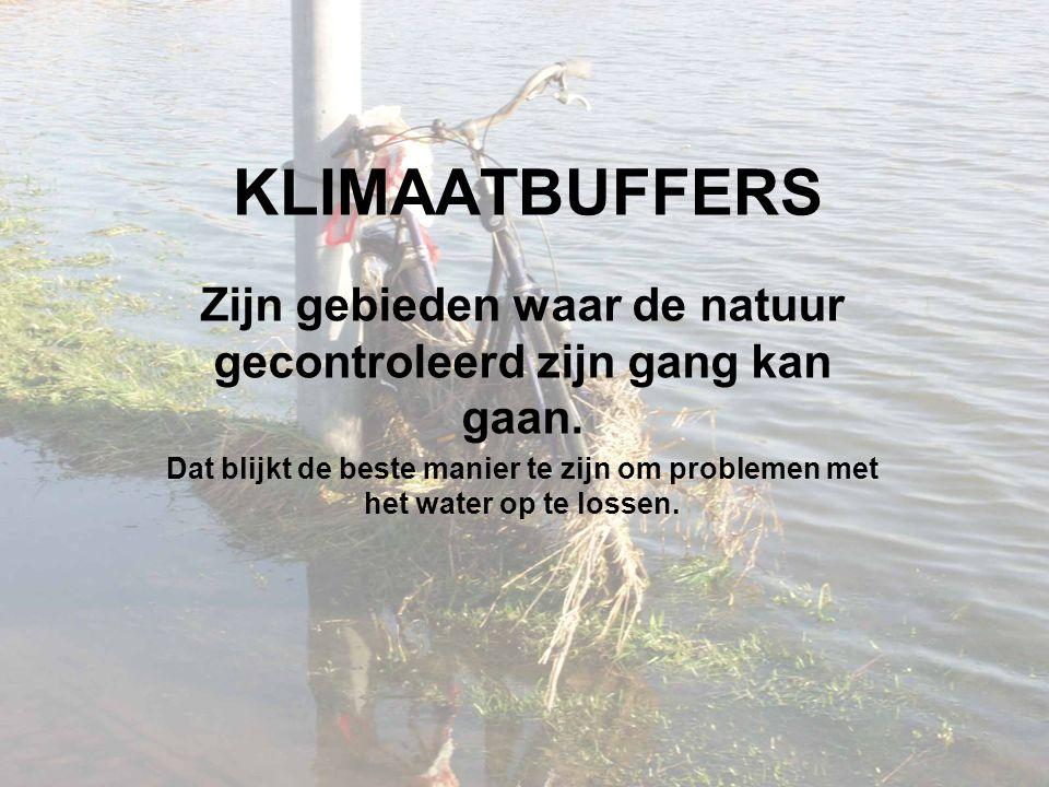 KLIMAATBUFFERS Zijn gebieden waar de natuur gecontroleerd zijn gang kan gaan.