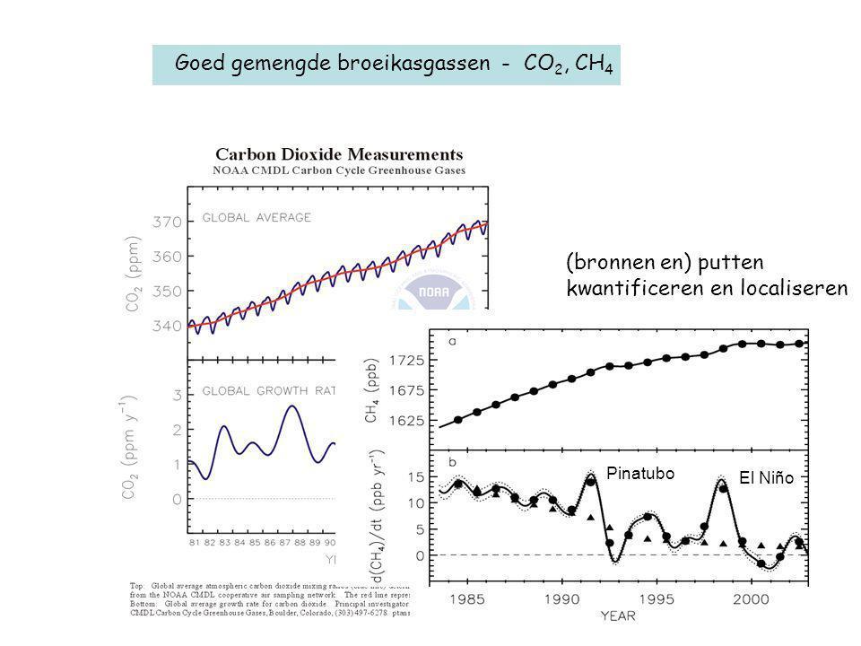Goed gemengde broeikasgassen - CO 2, CH 4 (bronnen en) putten kwantificeren en localiseren El Niño Pinatubo