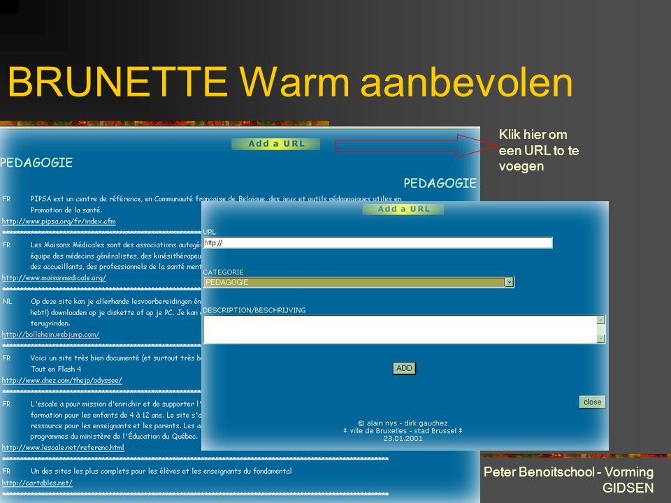28 maart 2001 Peter Benoitschool - Vorming GIDSEN BRUNETTE Warm aanbevolen De rubriek « warm aanbevolen » groepeert per thema links naar andere sites