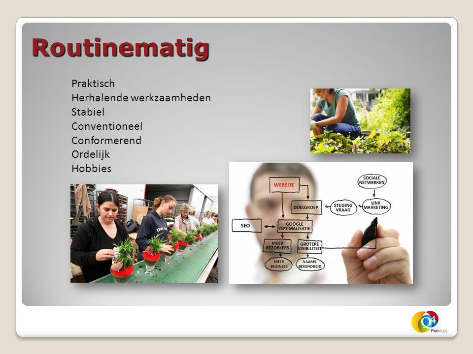 Routinematig Praktisch Herhalende werkzaamheden Stabiel Conventioneel Conformerend Ordelijk Hobbies