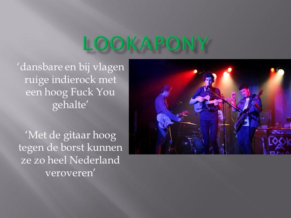 'dansbare en bij vlagen ruige indierock met een hoog Fuck You gehalte' 'Met de gitaar hoog tegen de borst kunnen ze zo heel Nederland veroveren'