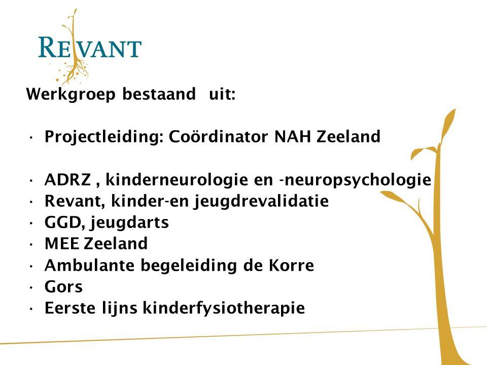 Werkgroep bestaand uit: Projectleiding: Coördinator NAH Zeeland ADRZ, kinderneurologie en -neuropsychologie Revant, kinder-en jeugdrevalidatie GGD, je
