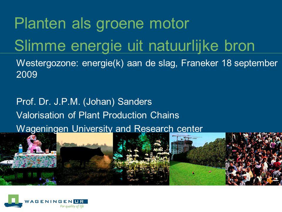 Planten als groene motor Slimme energie uit natuurlijke bron Westergozone: energie(k) aan de slag, Franeker 18 september 2009 Prof.