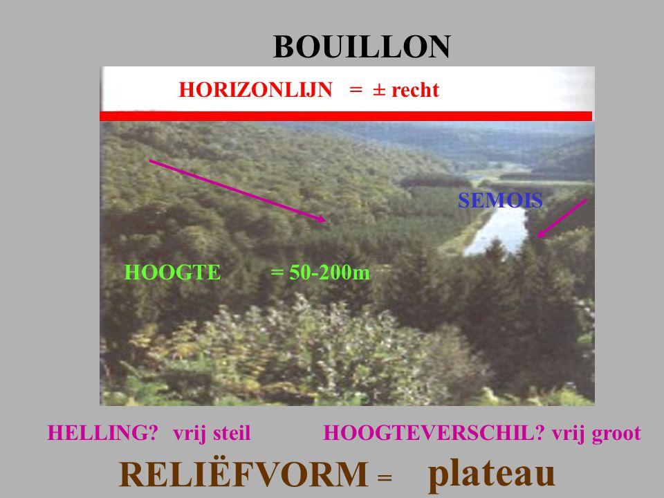 HORIZONLIJN= ± recht BOUILLON HOOGTE= 50-200m HELLING?vrij steil RELIËFVORM = plateau HOOGTEVERSCHIL?vrij groot SEMOIS