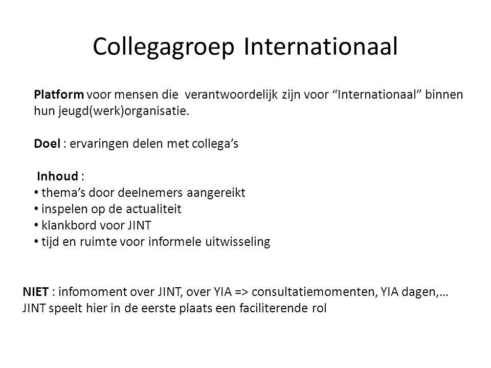 Collegagroep Internationaal Platform voor mensen die verantwoordelijk zijn voor Internationaal binnen hun jeugd(werk)organisatie.