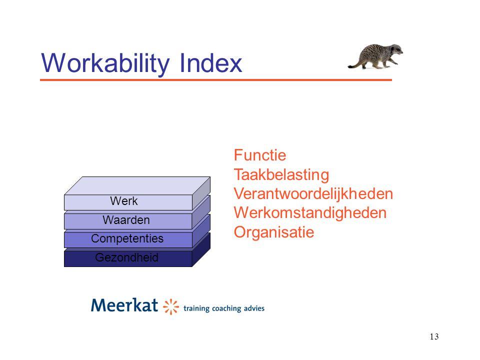 13 Workability Index Gezondheid Competenties Waarden Werk Functie Taakbelasting Verantwoordelijkheden Werkomstandigheden Organisatie