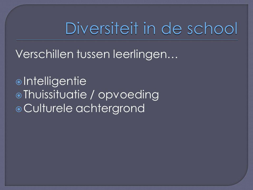 Verschillen tussen leerlingen…  Intelligentie  Thuissituatie / opvoeding  Culturele achtergrond