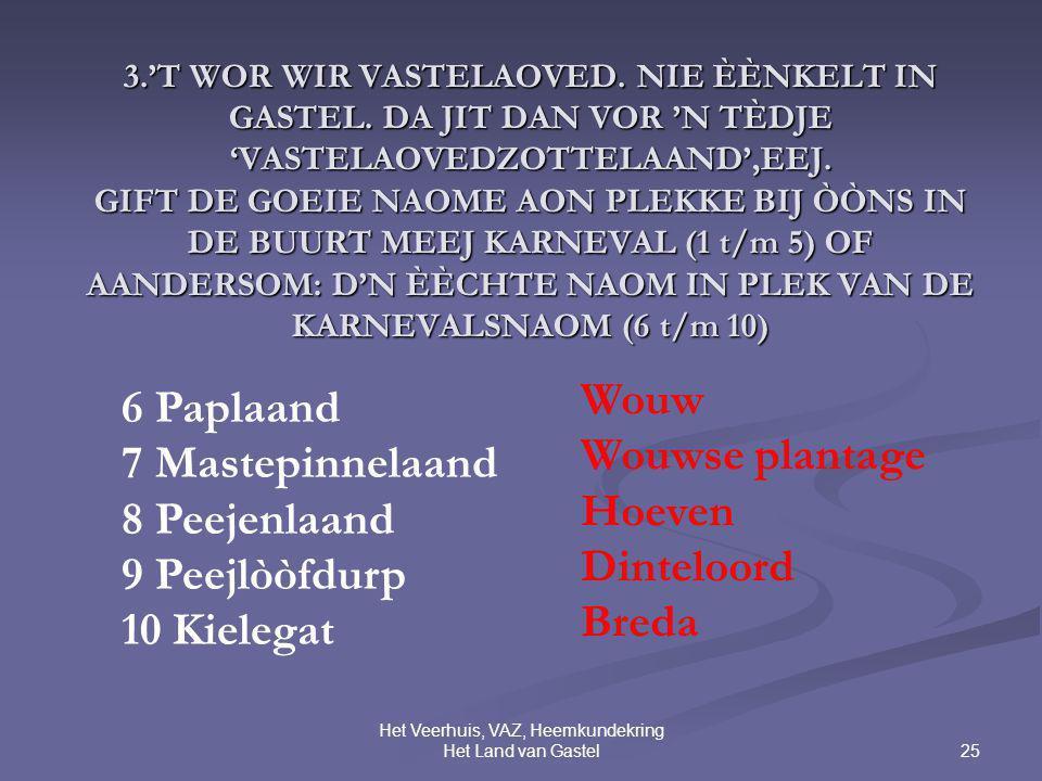 25 Het Veerhuis, VAZ, Heemkundekring Het Land van Gastel 3.'T WOR WIR VASTELAOVED. NIE ÈÈNKELT IN GASTEL. DA JIT DAN VOR 'N TÈDJE 'VASTELAOVEDZOTTELAA