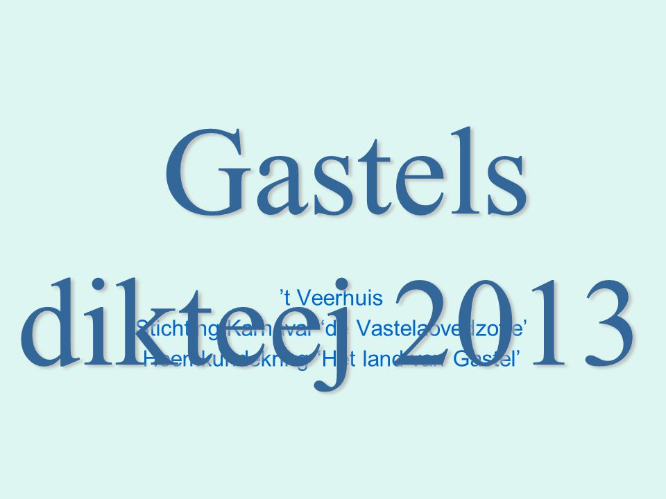't Veerhuis Stichting Karnaval 'de Vastelaovedzotte' Heemkundekring 'Het land van Gastel' Gastels dikteej 2013