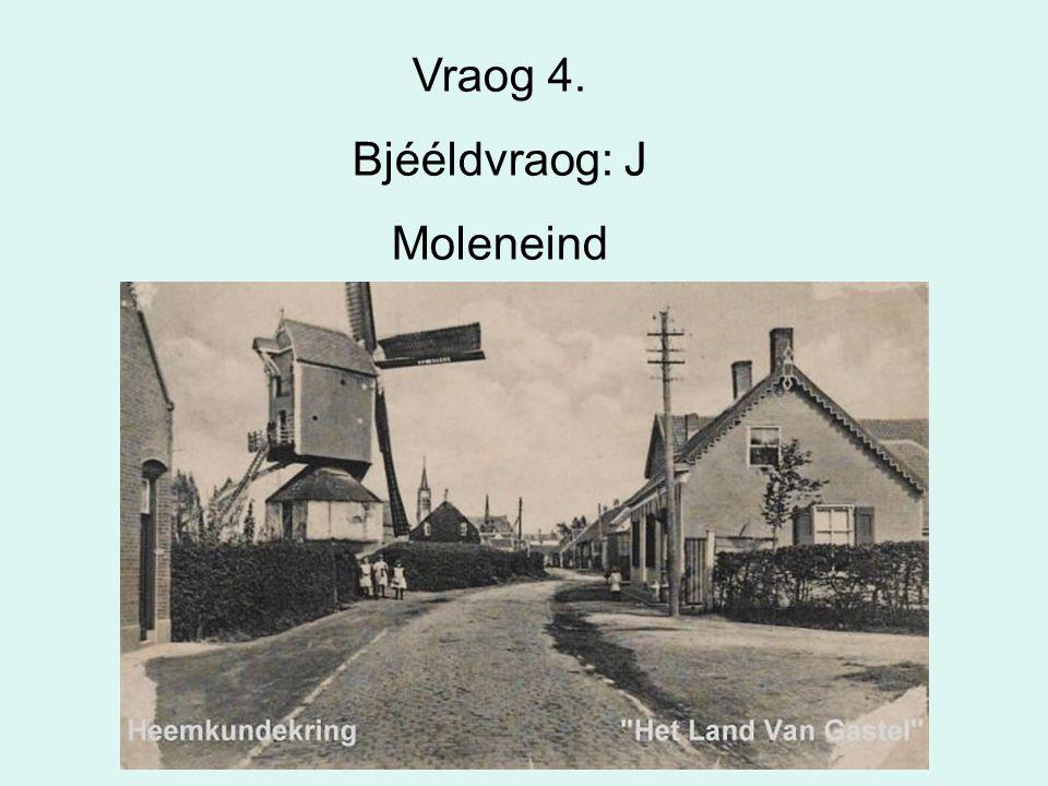 46 Vraog 4. Bjééldvraog: J Moleneind
