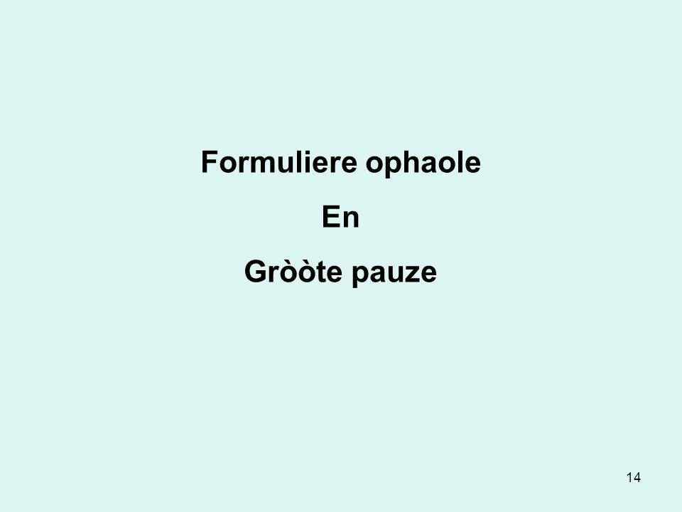 14 Formuliere ophaole En Gròòte pauze
