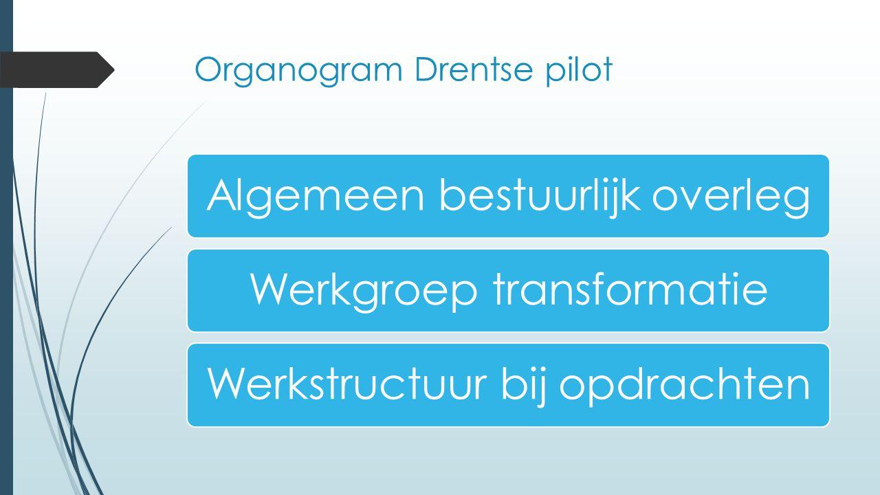Organogram Drentse pilot Algemeen bestuurlijk overlegWerkgroep transformatieWerkstructuur bij opdrachten