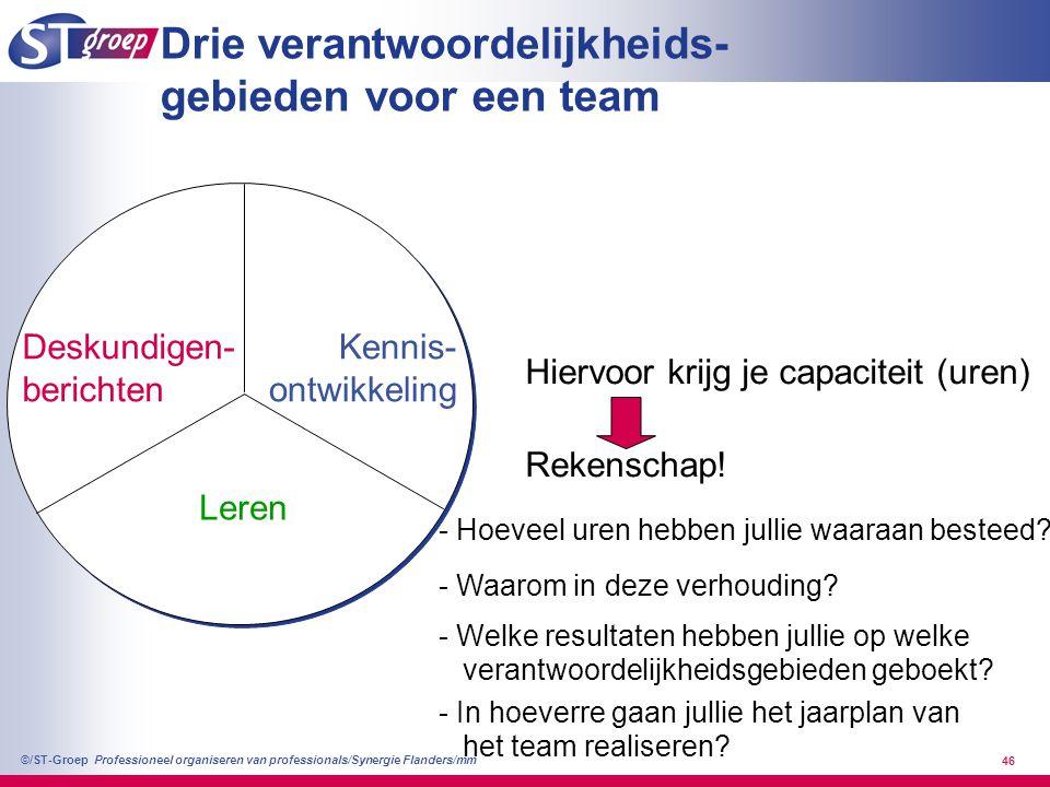 Professioneel organiseren van professionals/Synergie Flanders/mm ©/ST-Groep 46 Drie verantwoordelijkheids- gebieden voor een team Deskundigen- bericht