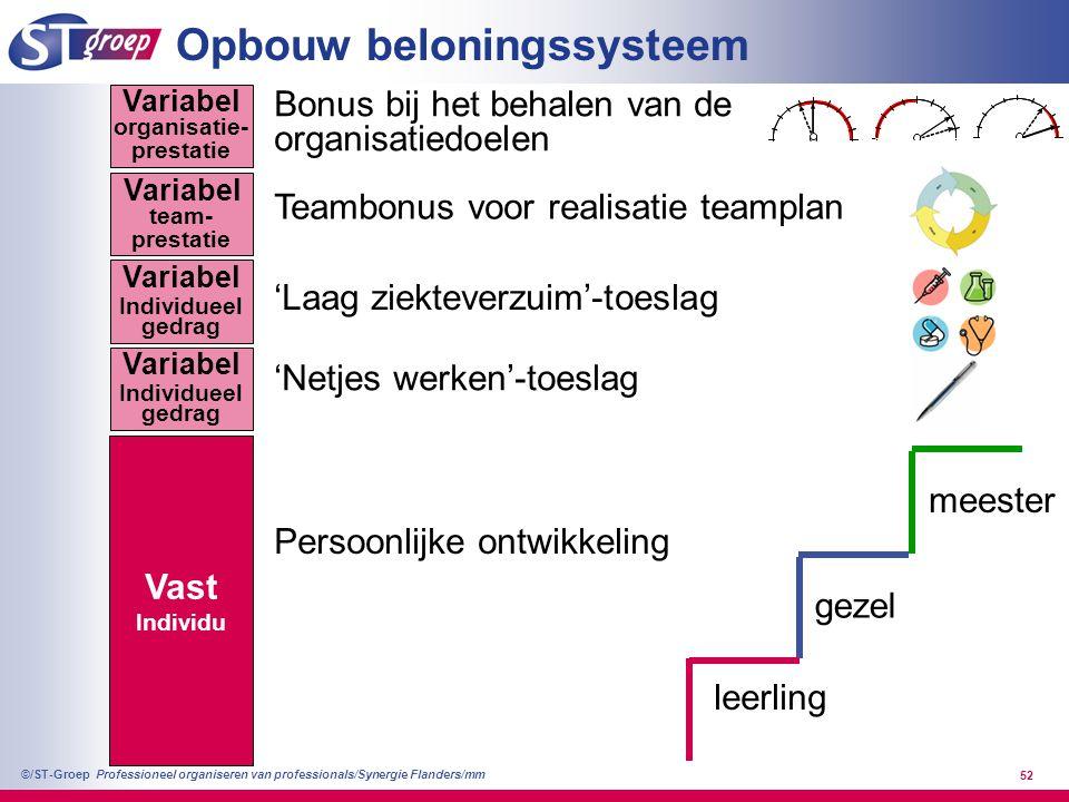 Professioneel organiseren van professionals/Synergie Flanders/mm ©/ST-Groep 52 Vast Individu leerling gezel meester Persoonlijke ontwikkeling 'Netjes