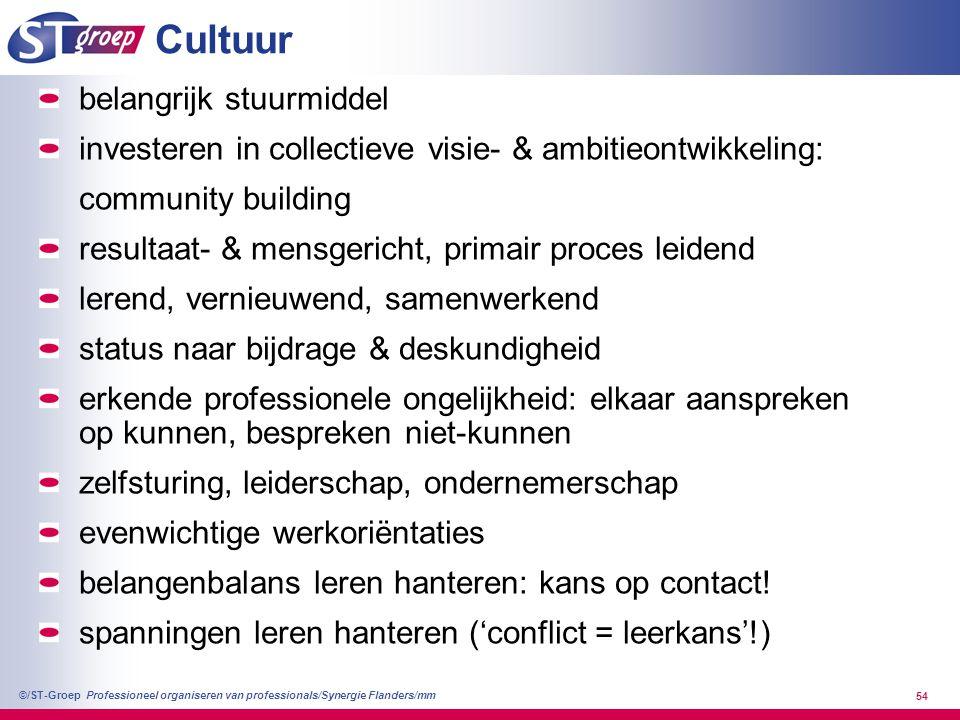 Professioneel organiseren van professionals/Synergie Flanders/mm ©/ST-Groep 54 Cultuur belangrijk stuurmiddel investeren in collectieve visie- & ambit