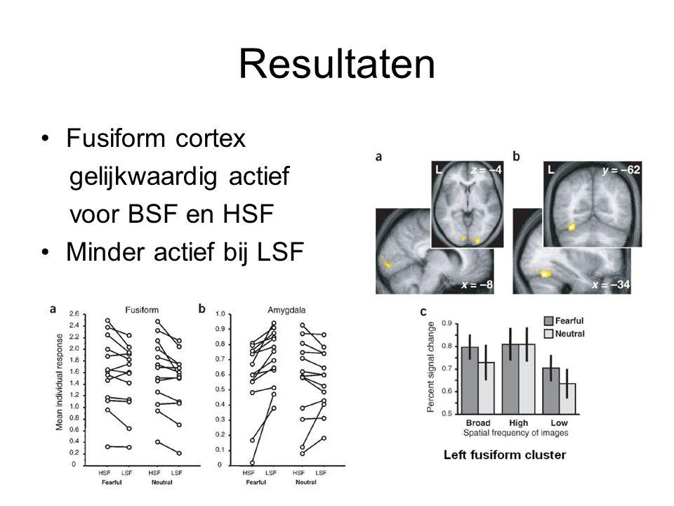 Resultaten Fusiform cortex gelijkwaardig actief voor BSF en HSF Minder actief bij LSF