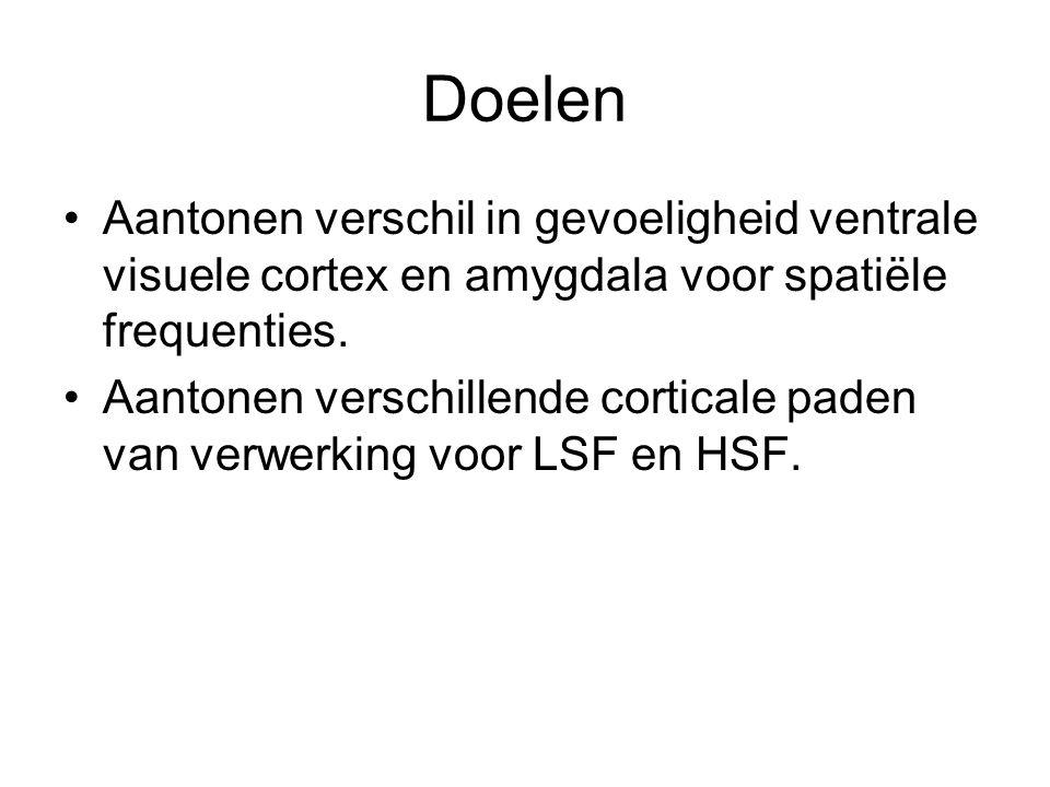 Resultaten Amygdala en colliculaire thalamusclusters actiever bij angst in BSF en LSF