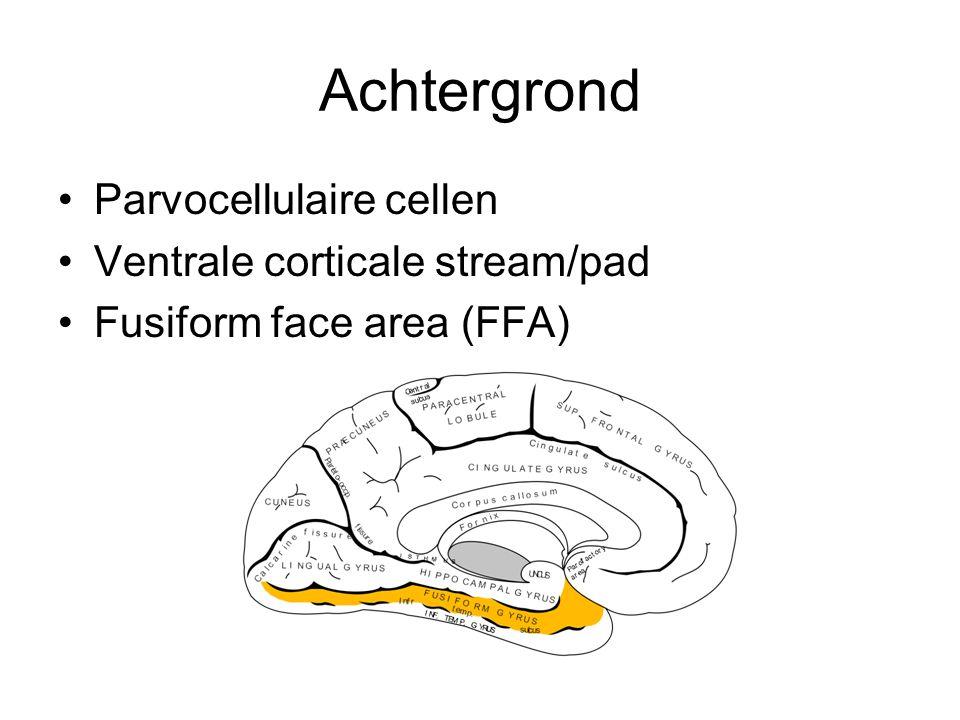 Achtergrond Parvocellulaire cellen Ventrale corticale stream/pad Fusiform face area (FFA)