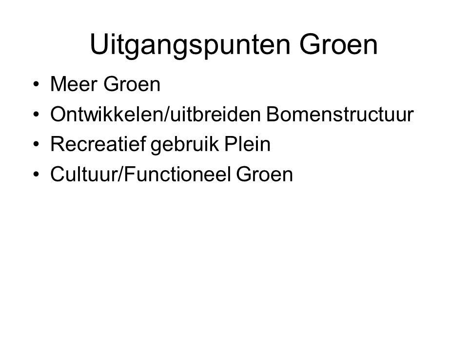 Uitgangspunten Groen Meer Groen Ontwikkelen/uitbreiden Bomenstructuur Recreatief gebruik Plein Cultuur/Functioneel Groen