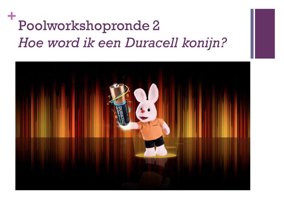 + Poolworkshopronde 2 Hoe word ik een Duracell konijn