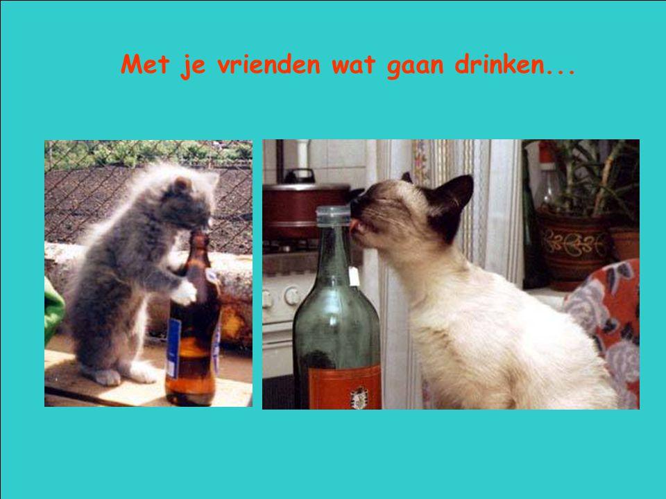 Met je vrienden wat gaan drinken...