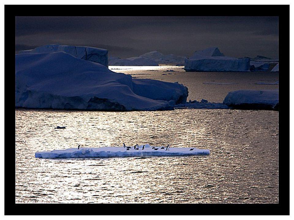 Bijna 99% van Antarctica is bedekt met een ongeveer 2500 meter dikke ijslaag, op sommige plaatsen zelfs tot 4776 meter dik. Als de ijslaag zou smelten
