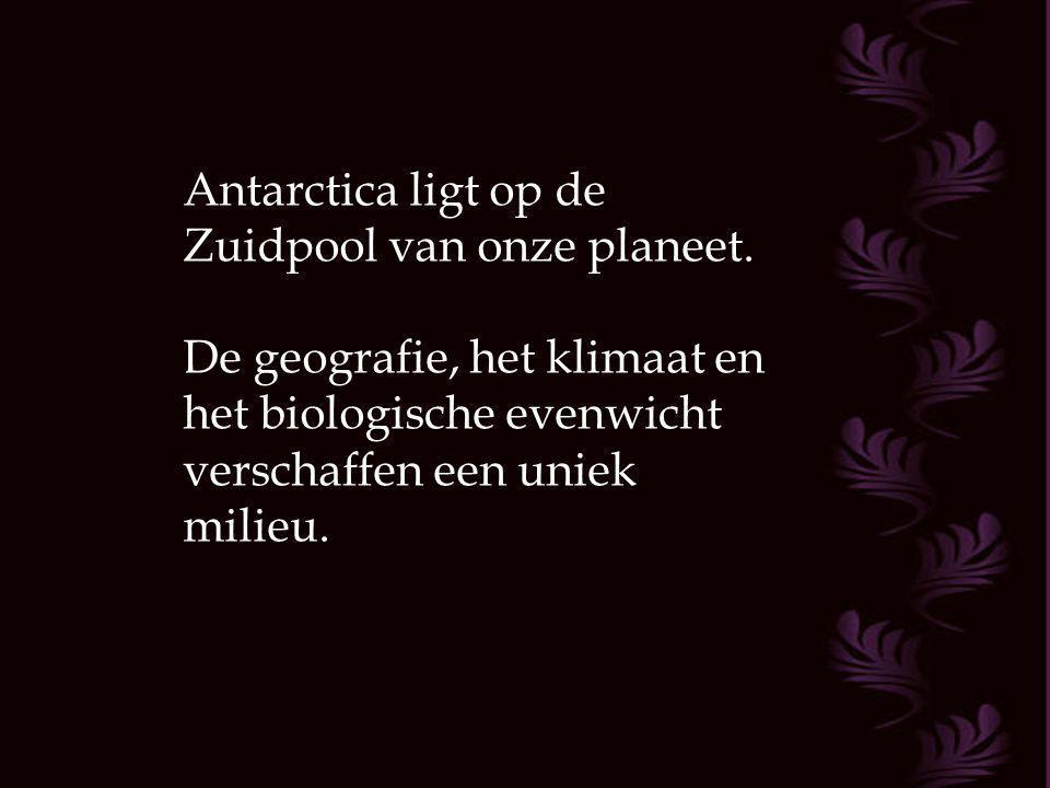 Antarctica ligt op de Zuidpool van onze planeet.