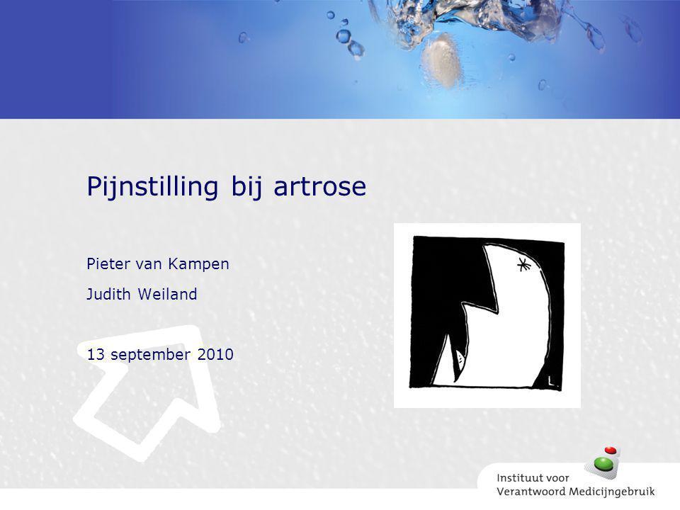 Pieter van Kampen Judith Weiland 13 september 2010 Pijnstilling bij artrose