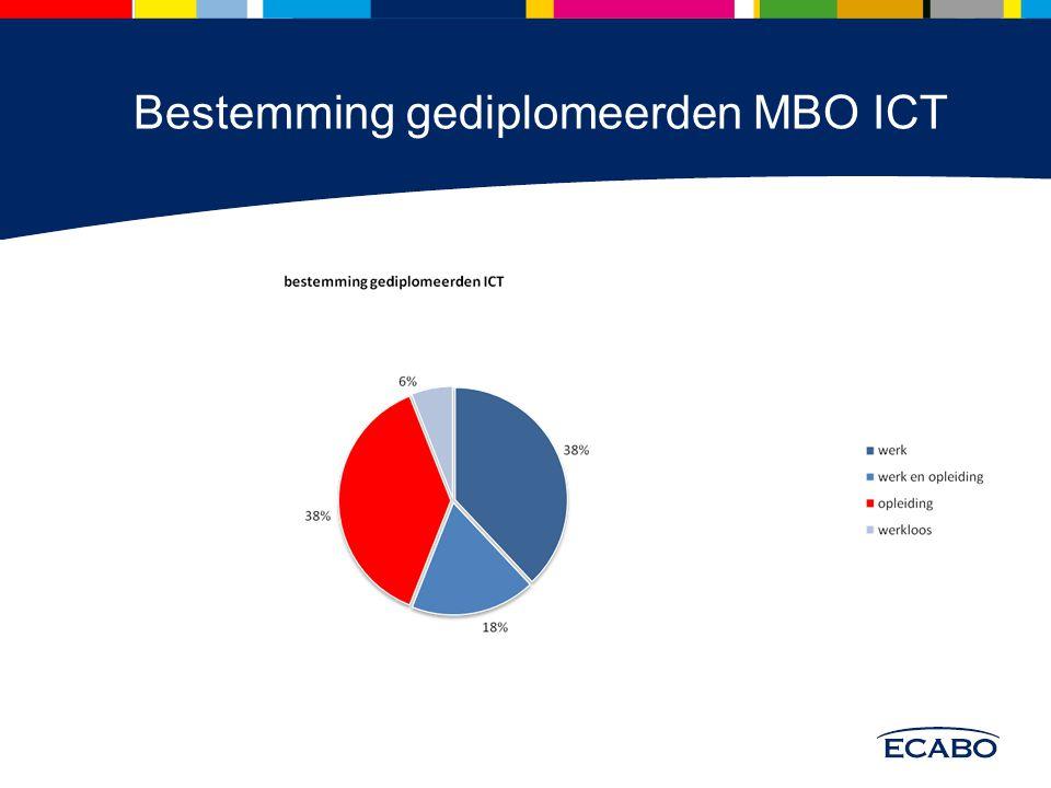 Bestemming gediplomeerden MBO ICT