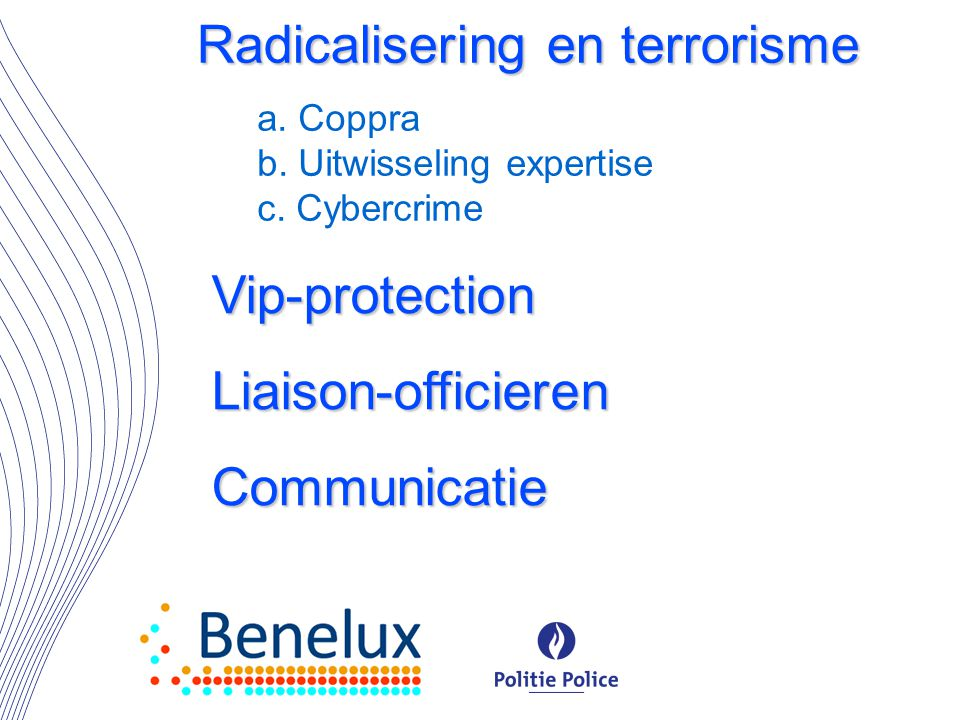 a. Coppra b. Uitwisseling expertise c. Cybercrime Radicalisering en terrorisme Vip-protection Liaison-officieren Communicatie