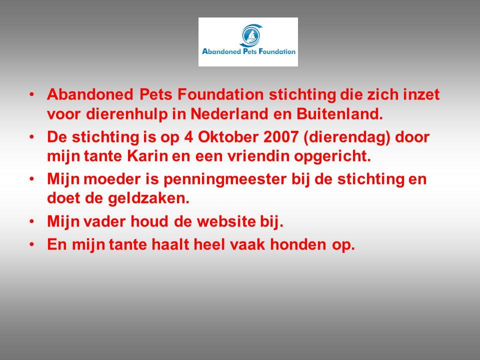 Abandoned Pets Foundation stichting die zich inzet voor dierenhulp in Nederland en Buitenland.