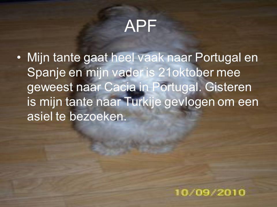 APF Mijn tante gaat heel vaak naar Portugal en Spanje en mijn vader is 21oktober mee geweest naar Cacia in Portugal.