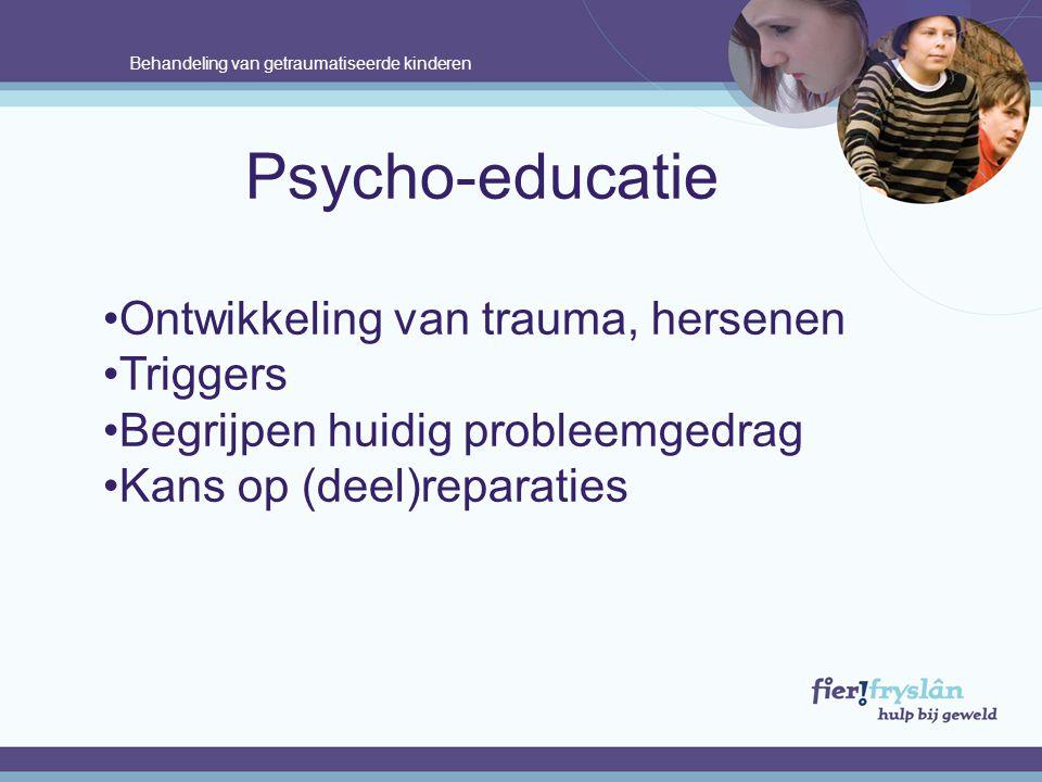 Behandeling van getraumatiseerde kinderen Psycho-educatie Ontwikkeling van trauma, hersenen Triggers Begrijpen huidig probleemgedrag Kans op (deel)reparaties.