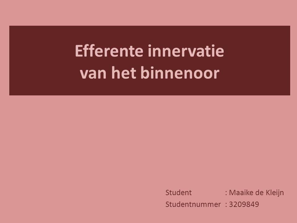 Efferente innervatie van het binnenoor Student: Maaike de Kleijn Studentnummer: 3209849
