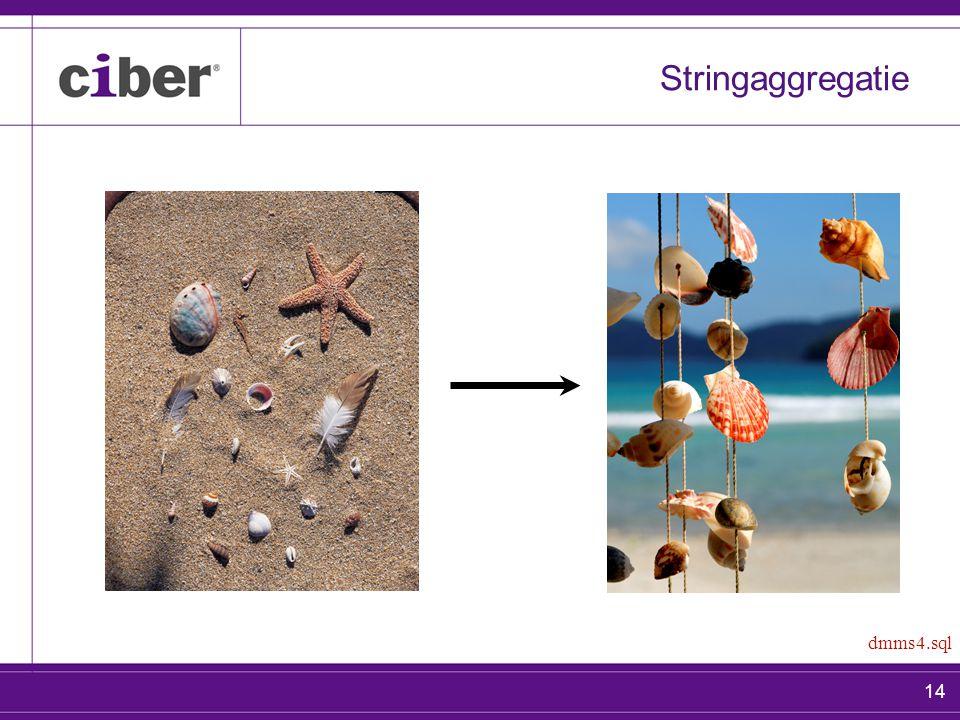 14 Stringaggregatie dmms4.sql