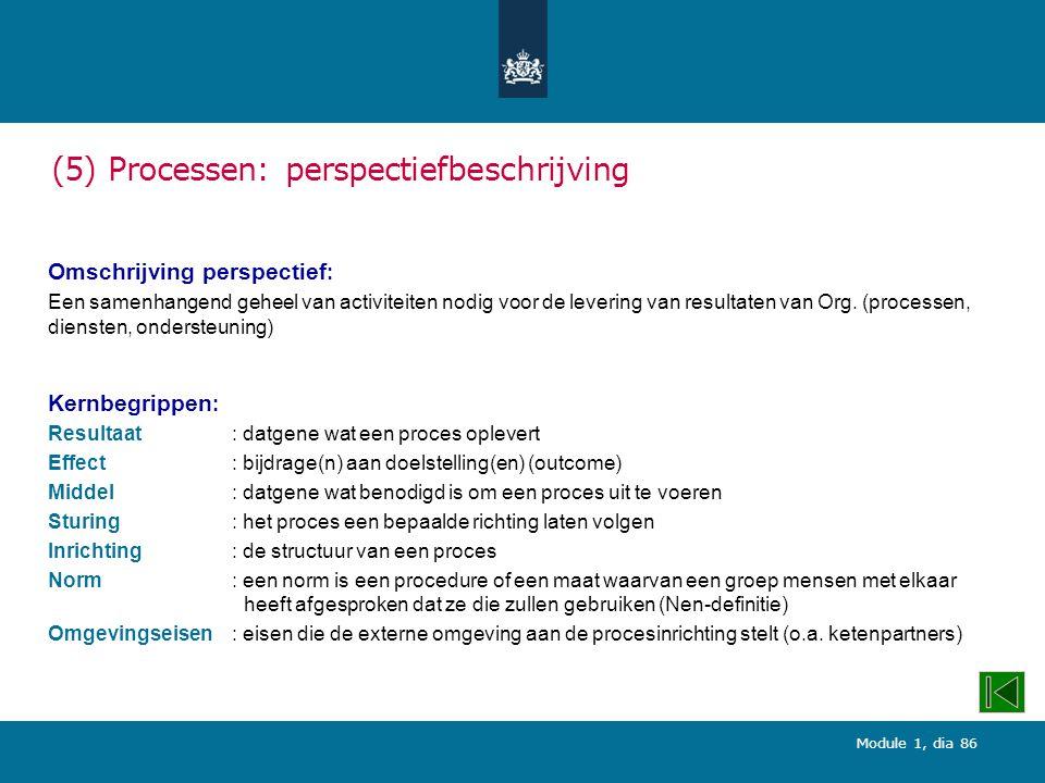 Module 1, dia 86 (5) Processen: perspectiefbeschrijving Omschrijving perspectief : Een samenhangend geheel van activiteiten nodig voor de levering van resultaten van Org.