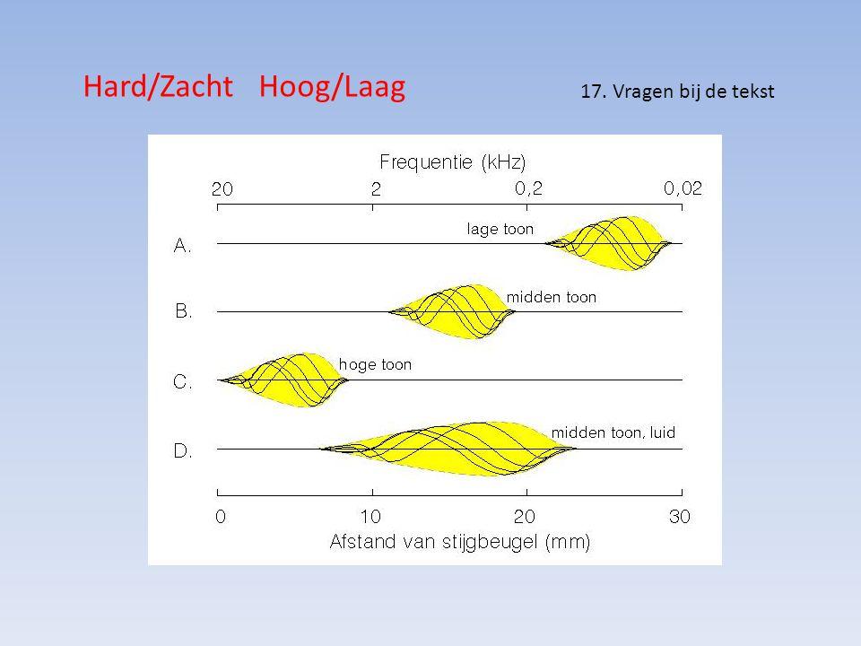 Hard/Zacht Hoog/Laag 17. Vragen bij de tekst
