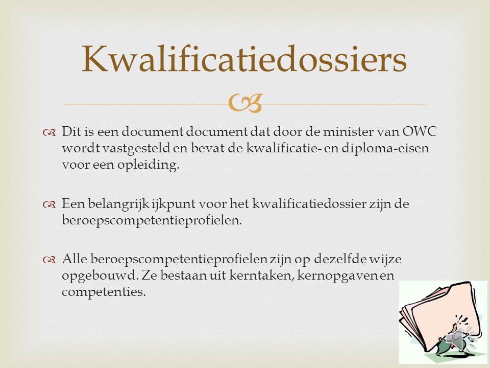   Dit is een document document dat door de minister van OWC wordt vastgesteld en bevat de kwalificatie- en diploma-eisen voor een opleiding.