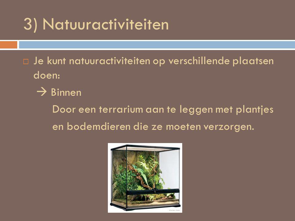 3) Natuuractiviteiten  Je kunt natuuractiviteiten op verschillende plaatsen doen:  Binnen Door een terrarium aan te leggen met plantjes en bodemdieren die ze moeten verzorgen.