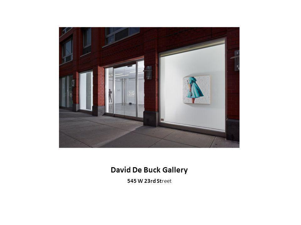 David De Buck Gallery 545 W 23rd Street