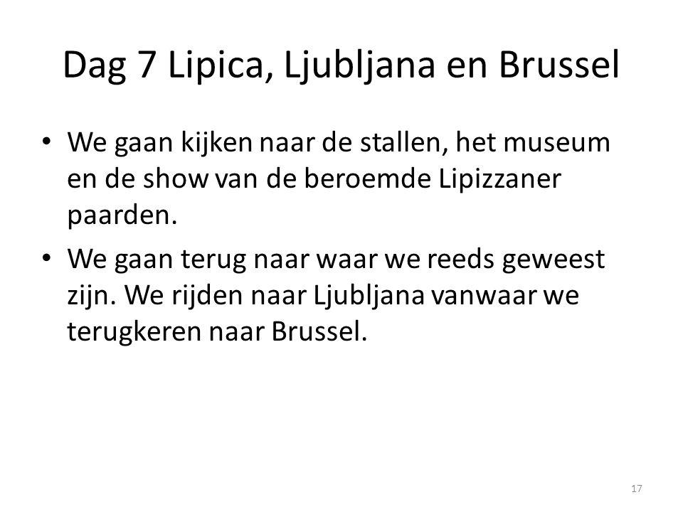 Dag 7 Lipica, Ljubljana en Brussel We gaan kijken naar de stallen, het museum en de show van de beroemde Lipizzaner paarden.