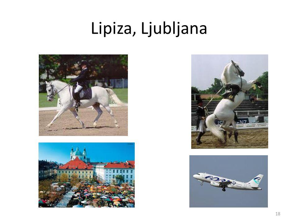 Lipiza, Ljubljana 18