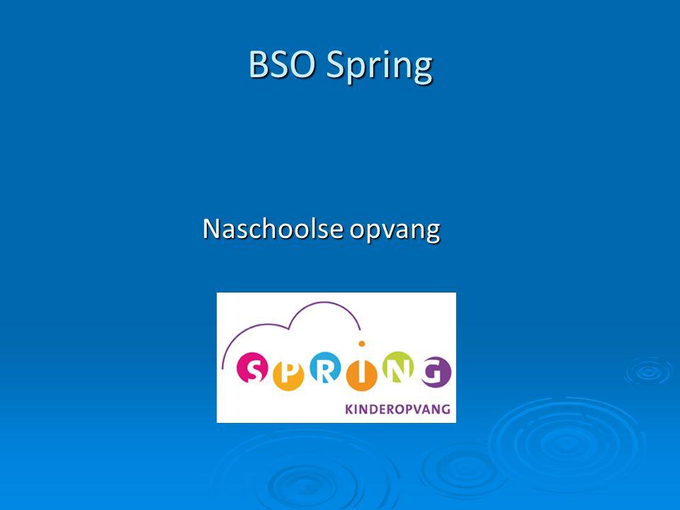 BSO Spring Naschoolse opvang Naschoolse opvang