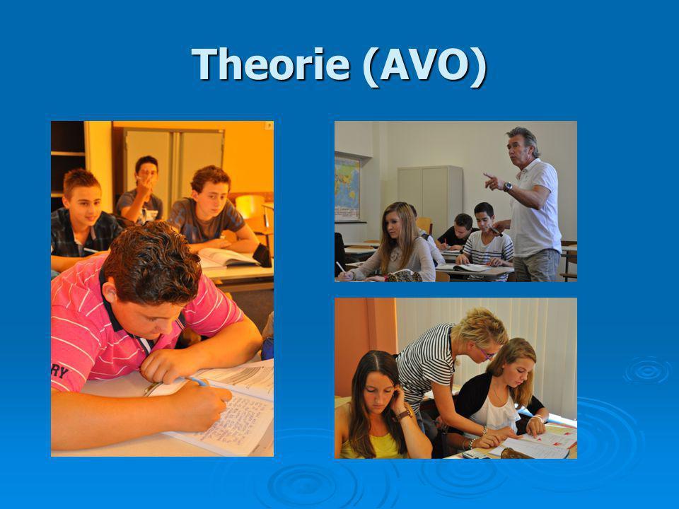 Theorie (AVO)