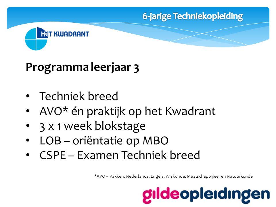 Programma leerjaar 4 Beroep specifiek 2 dagen AVO op het Kwadrant 2 dagen praktijk bij de Gilde Opleiding 1 dag Stage VMBO Examen