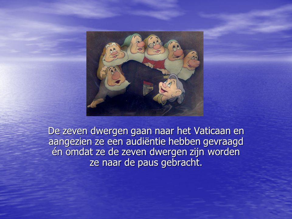 De zeven dwergen gaan naar het Vaticaan en aangezien ze een audiëntie hebben gevraagd én omdat ze de zeven dwergen zijn worden ze naar de paus gebracht.