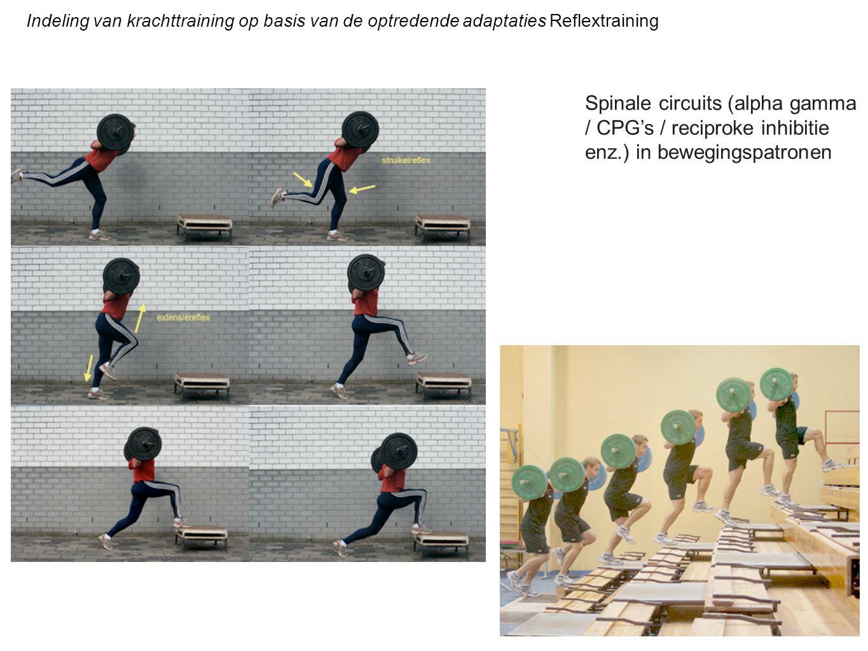 Indeling van krachttraining op basis van de optredende adaptaties Reflextraining Spinale circuits (alpha gamma / CPG's / reciproke inhibitie enz.) in